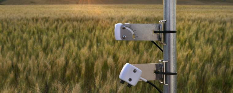 Continuously monitor plant, plot, or canopy spectral vegetation indices with the new Spectral Reflectance Sensor (SRS)